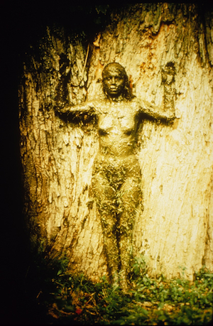 Ana-mendieta-tree-of-life