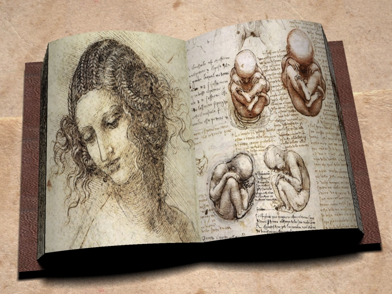 Da-Vinci-Notebook