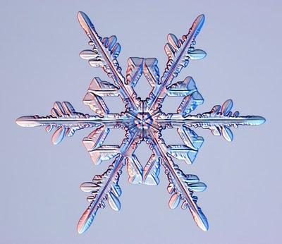 Snow-crystal