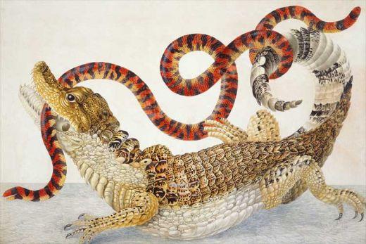Snake-caiman-maria-sibylla-merian