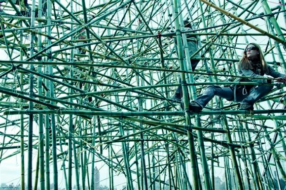 Bamboo-mike-doug-stern-2