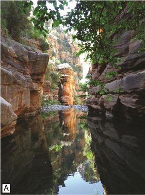 Mongollon-rim-verde-river-arizona