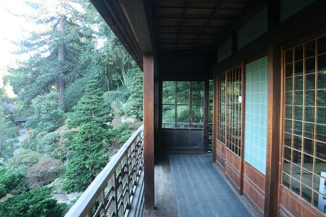 Imagine-hakone-tea-gardens
