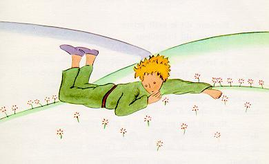 The-little-prince-lying-on-grass-meadow