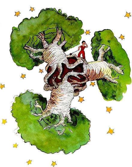 The-little-prince-baobab