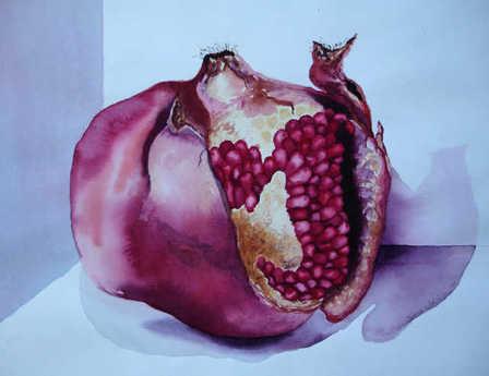 Sabinapomegranate