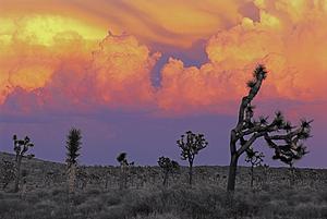 Thunderstorm_sunset
